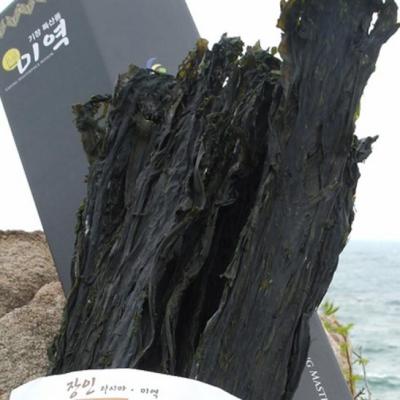 용궁수산[kijang.kr][수산양행] 기장바다 산후애(愛) 기장미역(1.5kg)수산양행기장미역 > 산모용미역